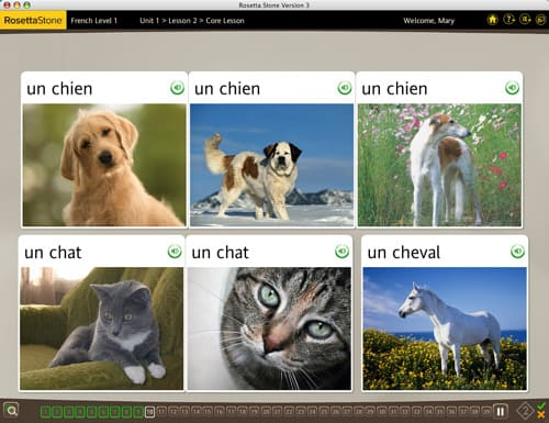 Rosetta Stone Screenshot 1